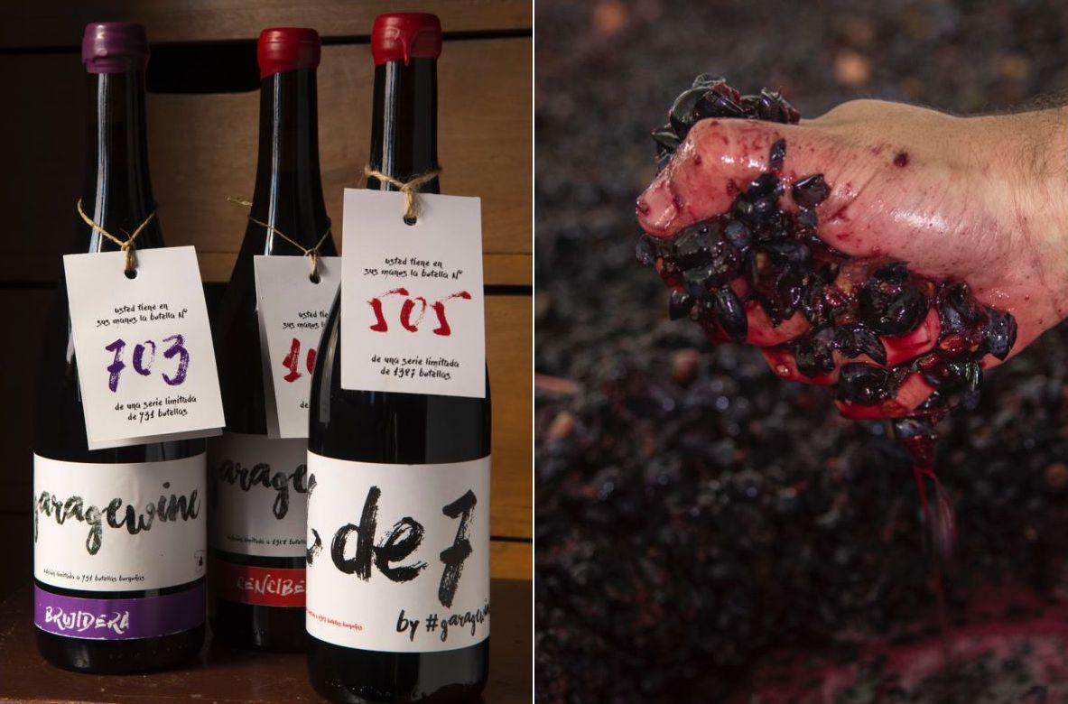 Algunos de los vinos han sido premiados por reconocidos medios del sector.
