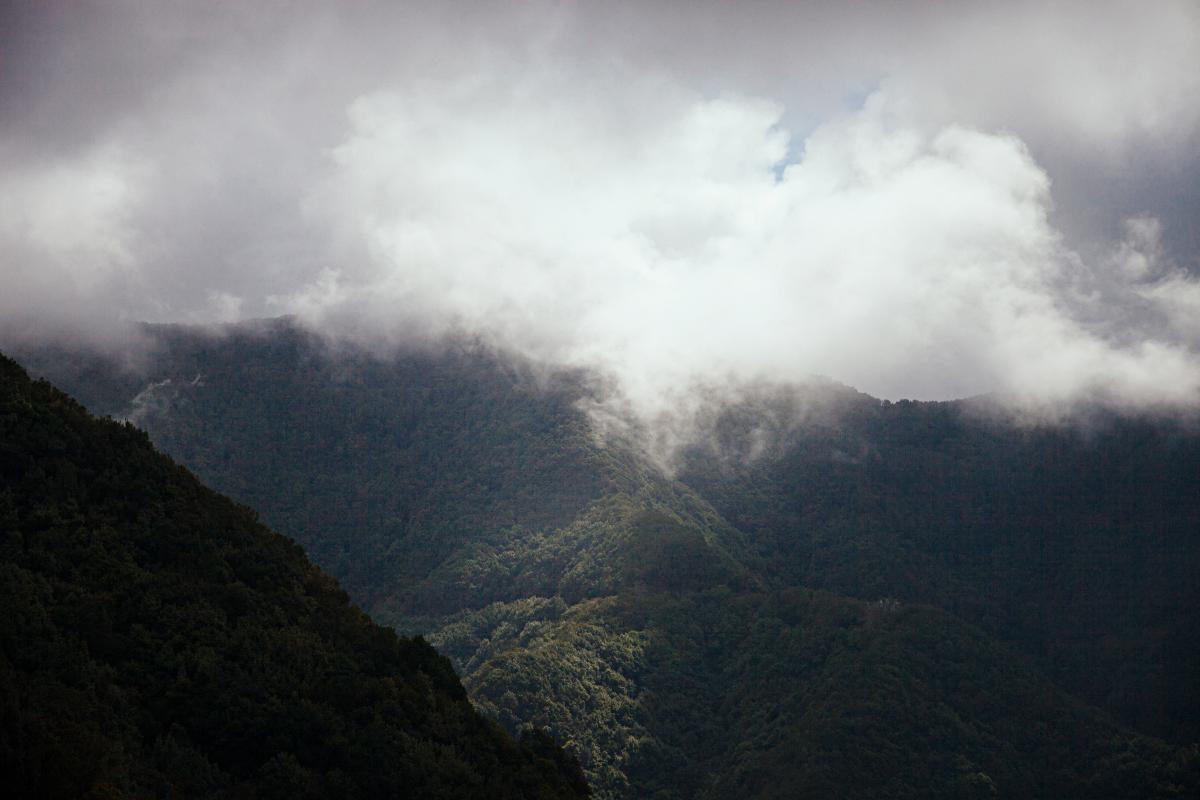 Senderos de Anaga, Tenerife. Fotos: Rocío Eslava