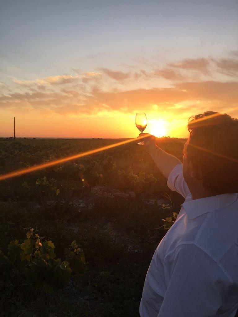 Los atardeceres son mejores con una copa de un buen vino en la mano.