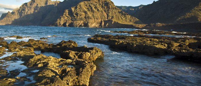 Ruta Cruz del Carmen - Punta de Hidalgo. Foto: Turismo de Tenerife.
