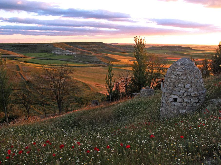 La estepa castellana desde el mirador de Tierra de Campos. Foto: Jacinta Iluch Valero. Flickr.