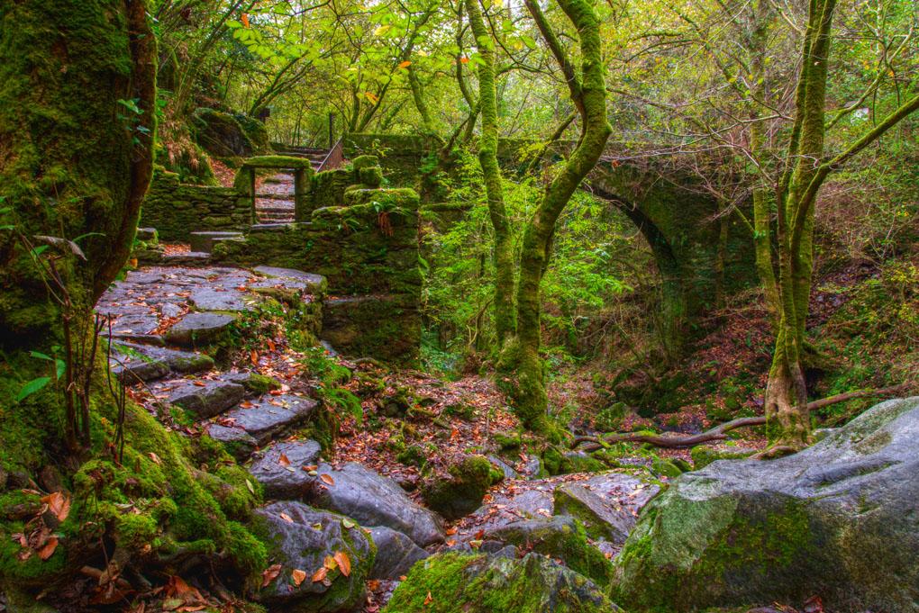 Paisaje naturista en A Coruña. Foto: Shutterstock