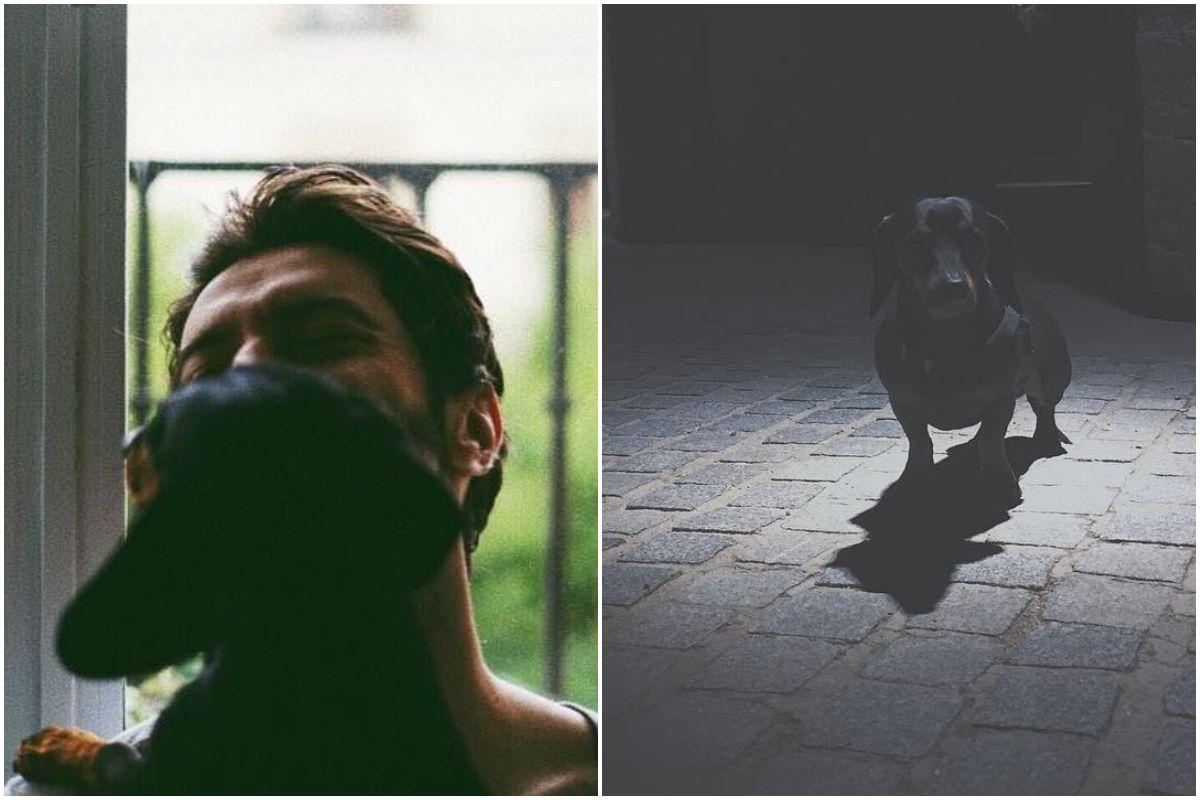 El actor Javier Rey con su perro, Vito, en su casa de Madrid y dándole un paseo.