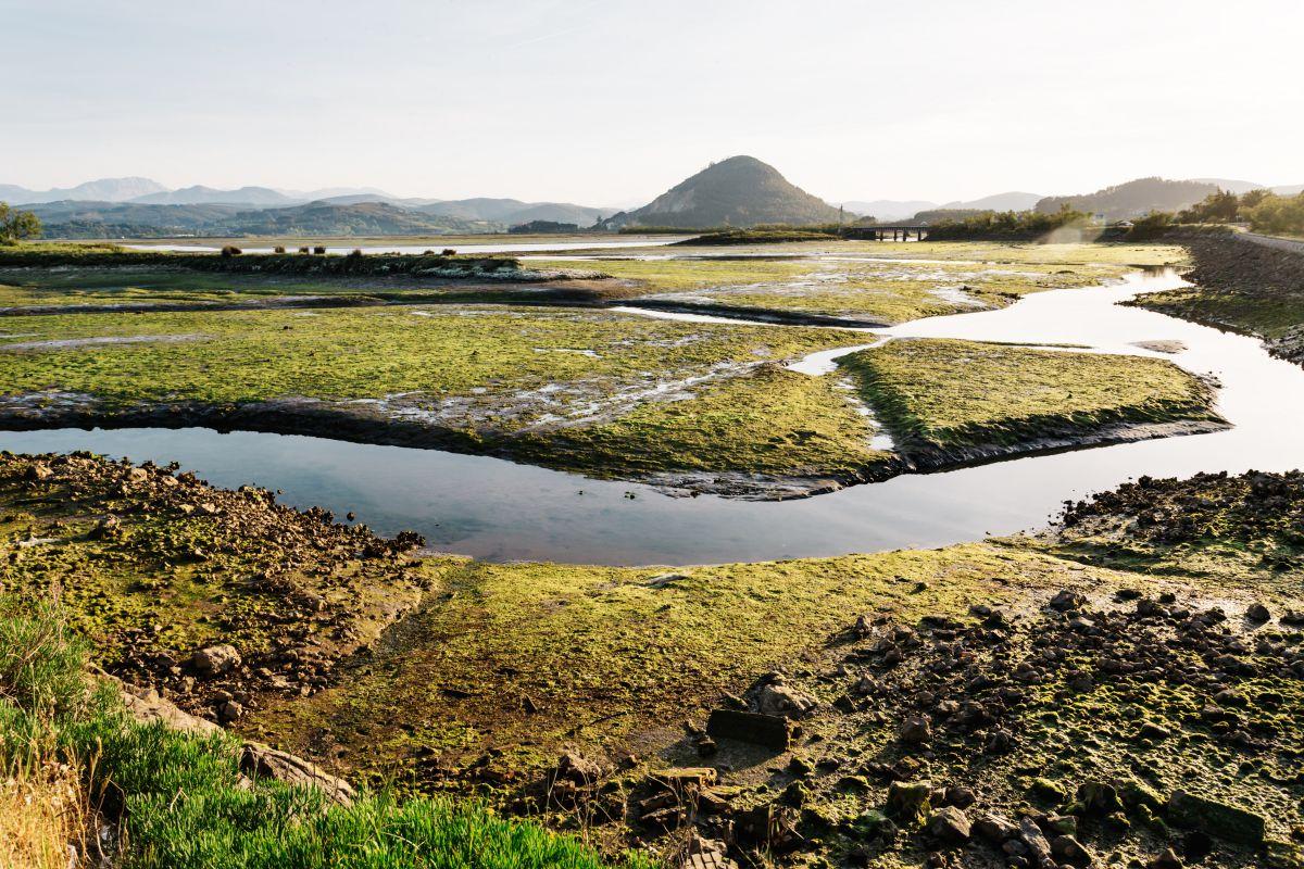 El Parque Natural de las Marismas de Santoña, Victoria y Joyel, en la desembocadura del río.
