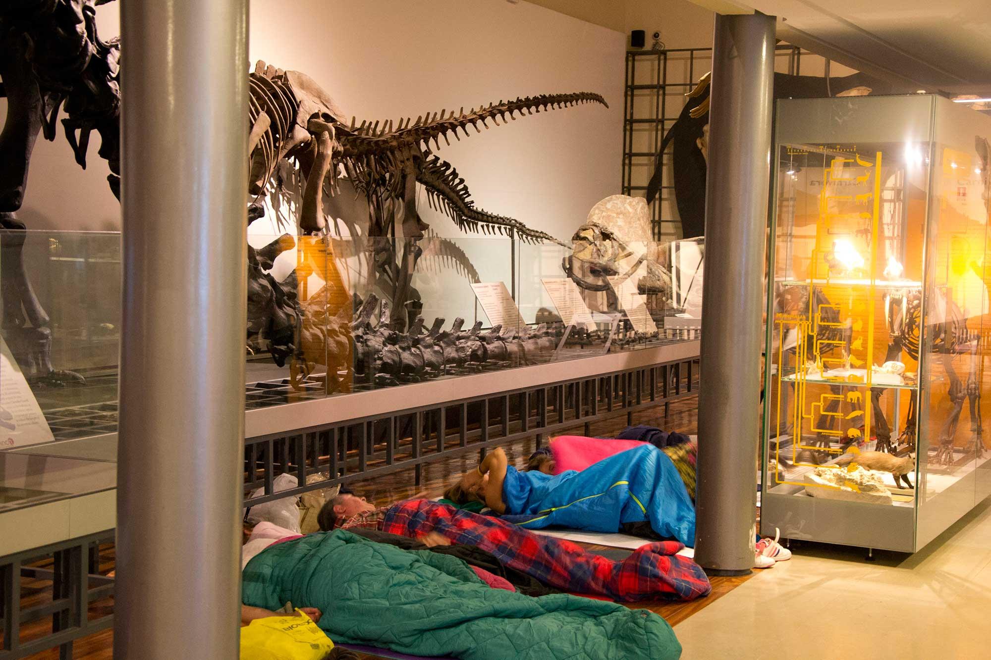 Llega la hora de intentar dormir, aunque sea rodeados de dinosaurios. Foto: Museo Ciencias Naturales