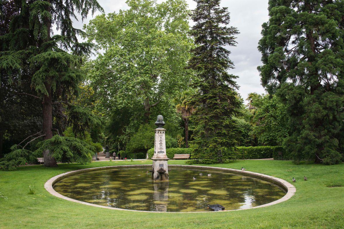 El estanque de Linneo en el Real Jardín Botánico de Madrid.