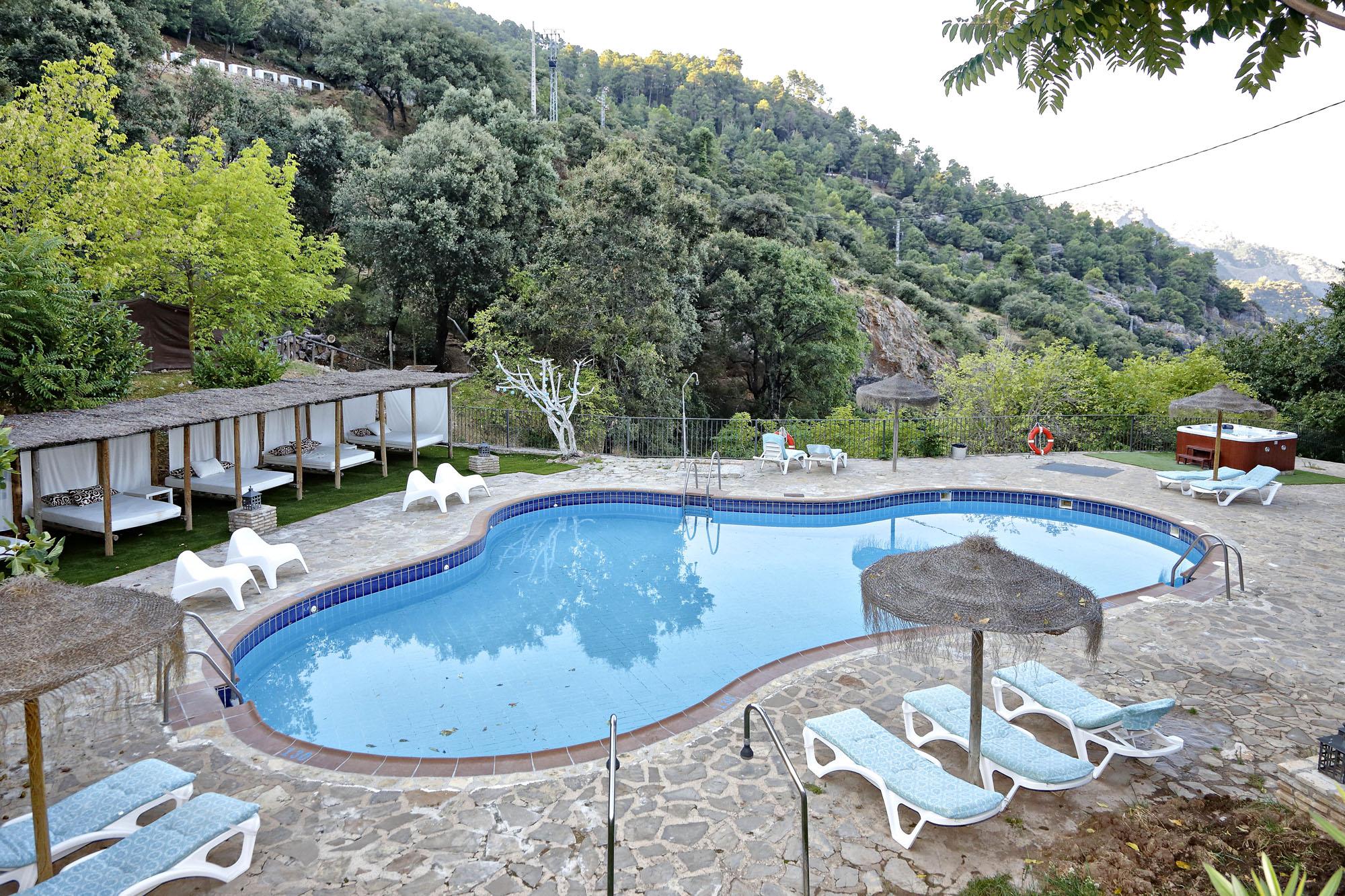 Hay mañanas en las que los machos monteses bajan a beber a la piscina.