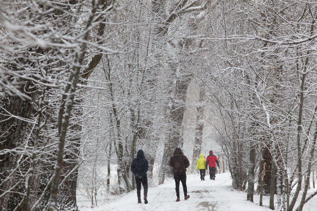 Hacía muchos años que no nevaba en Rascafría como el primer fin de semana de febrero.