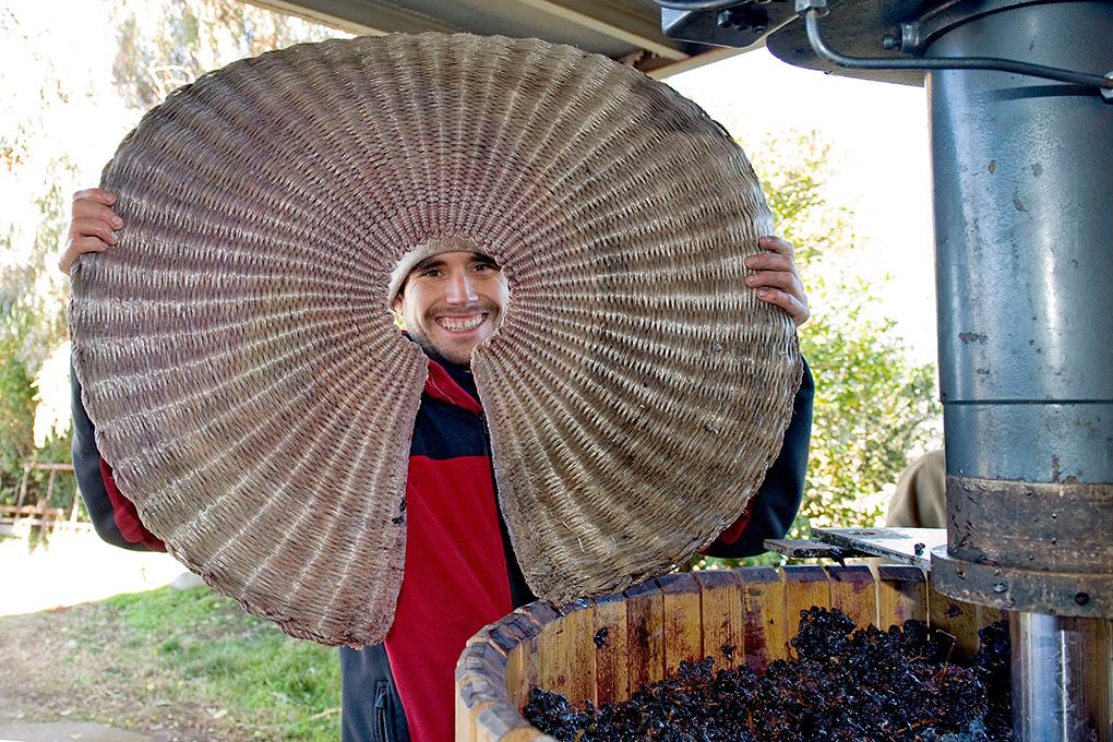 Miguel Martínez preparando las capas de esteras y uvas en la prensa.