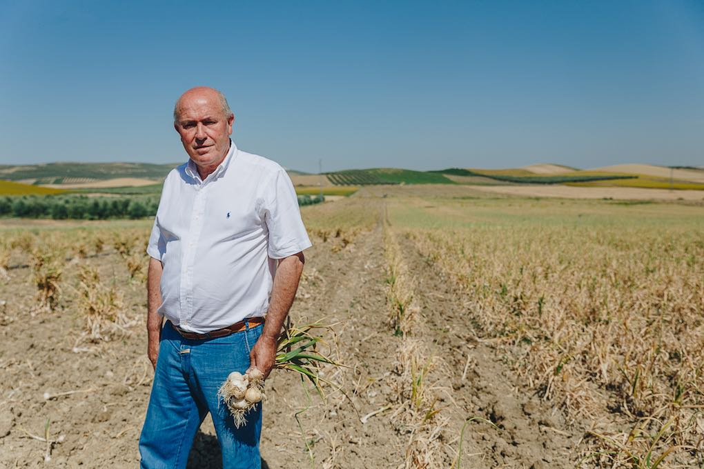 El gerente, Manuel Vaquero, sobre el terreno.