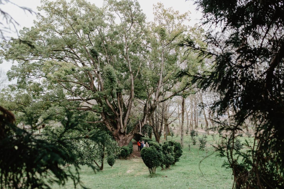 Unos visitantes pasean por las 16 hectáreas de jardín del pazo de Rubianes.