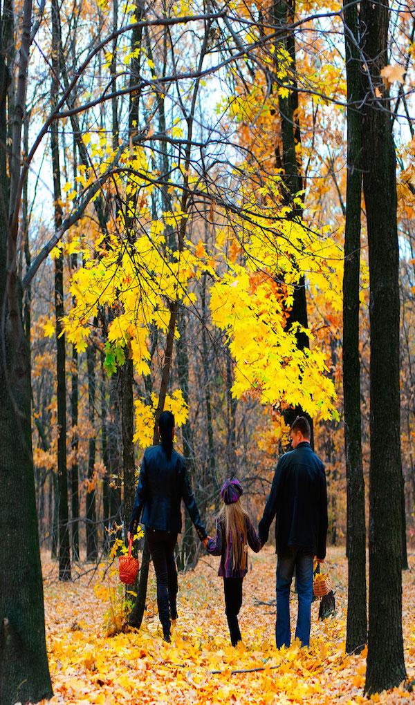 El bosque, para toda la familia. Foto: Shutterstock
