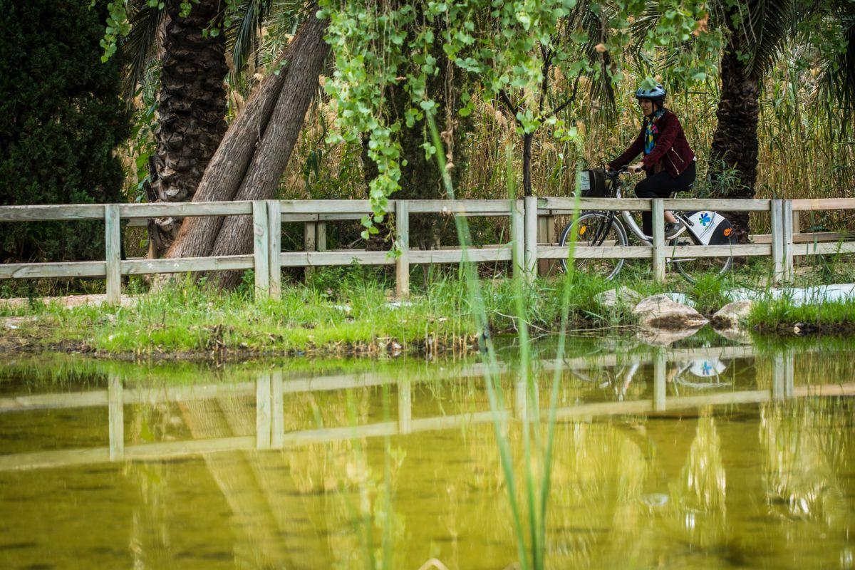 Paseando en bici junto al estanque central del Parque de Palmeras de Filet de Fora, en Elche (Alicante).