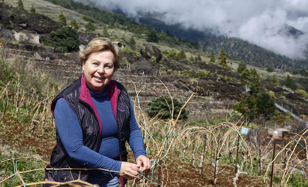 Carmen Gloria Ferrera en su viñedo.
