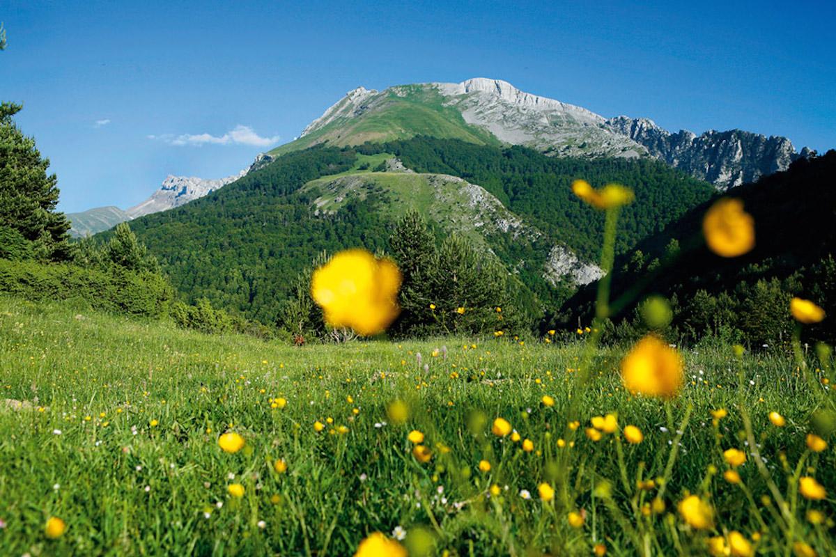 Panorámica primaveral del Pirineo aragonés