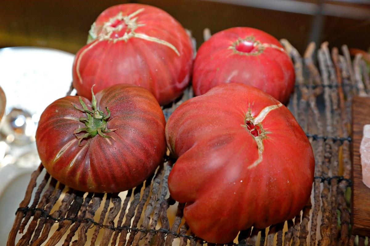 En 'El Invernadero' la carta la marca la naturaleza. Ahora es tiempo de tomates.