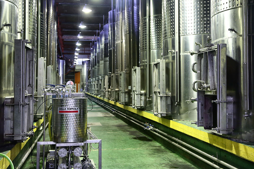 En Bodegas Insulares se puede llegar a almacenar hasta 600.000 kg de uva.