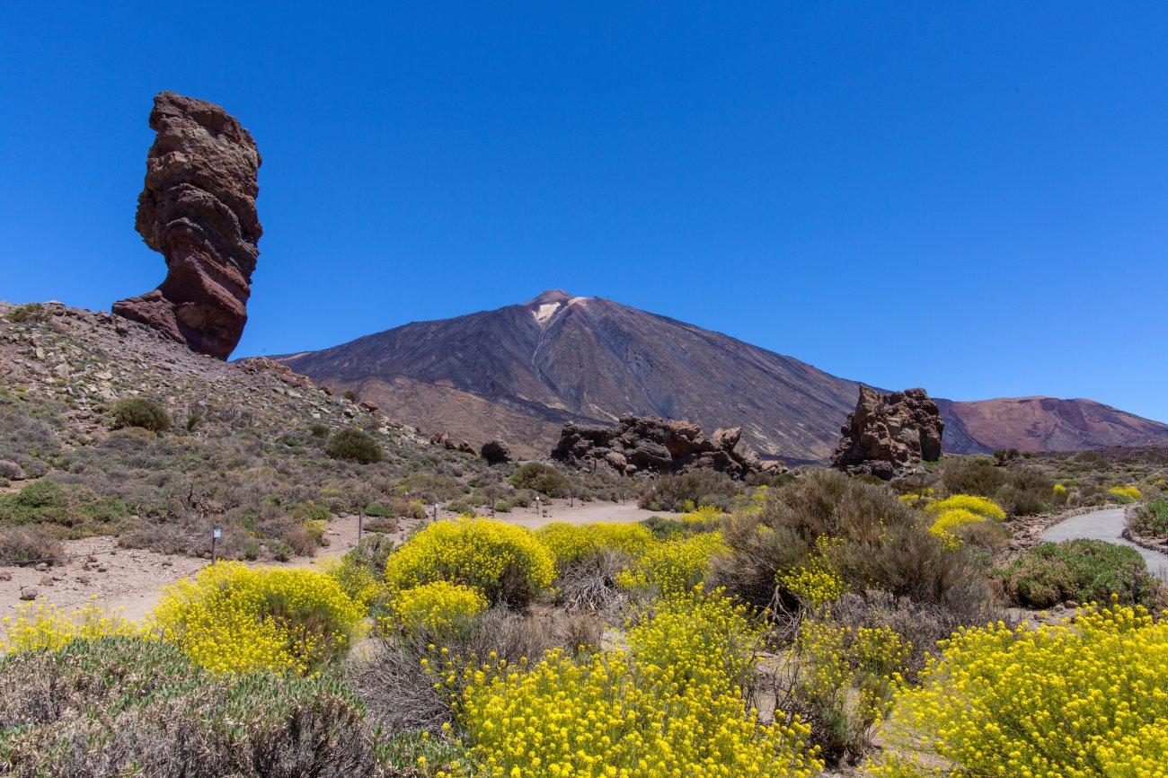 Parque Nacional Teide: Roque Cinchado