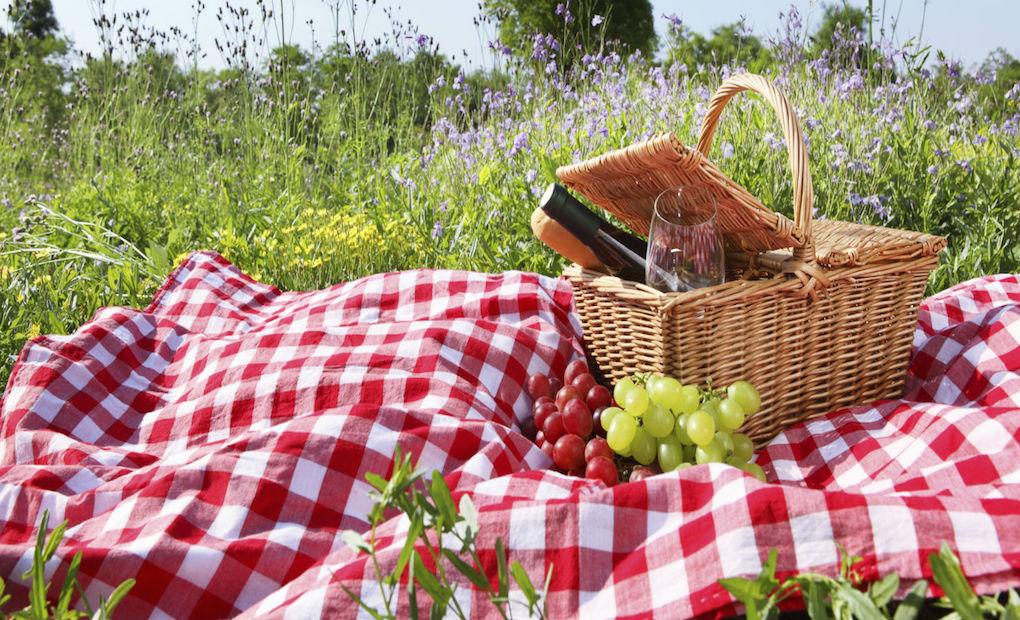 Así se hace un picnic.
