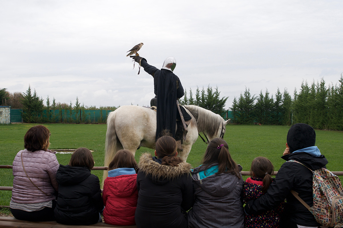 Un narrador va explicando la relación entre las aves rapaces y el hombre.