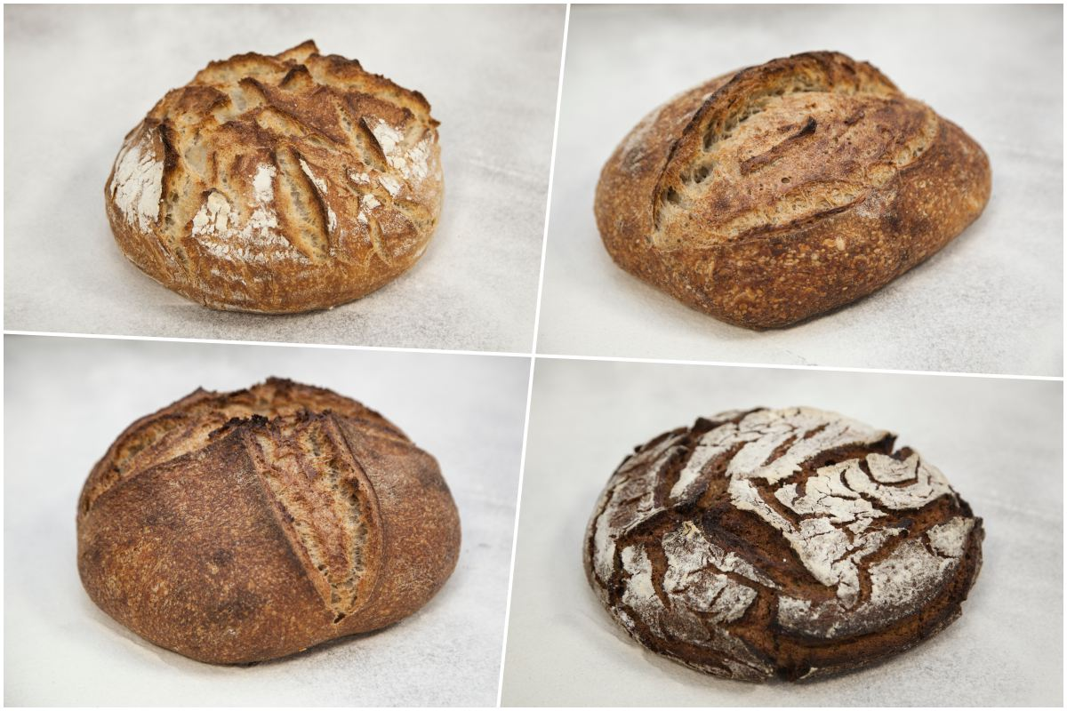 Panes de todo tipo: de trigo blanco, de centeno, integrales, etc.