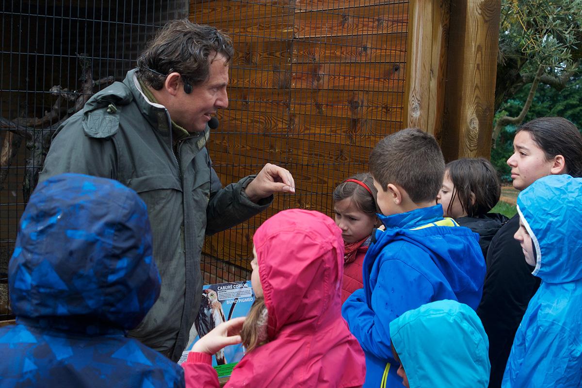Unas lecciones sobre aves rapaces antes de empezar.