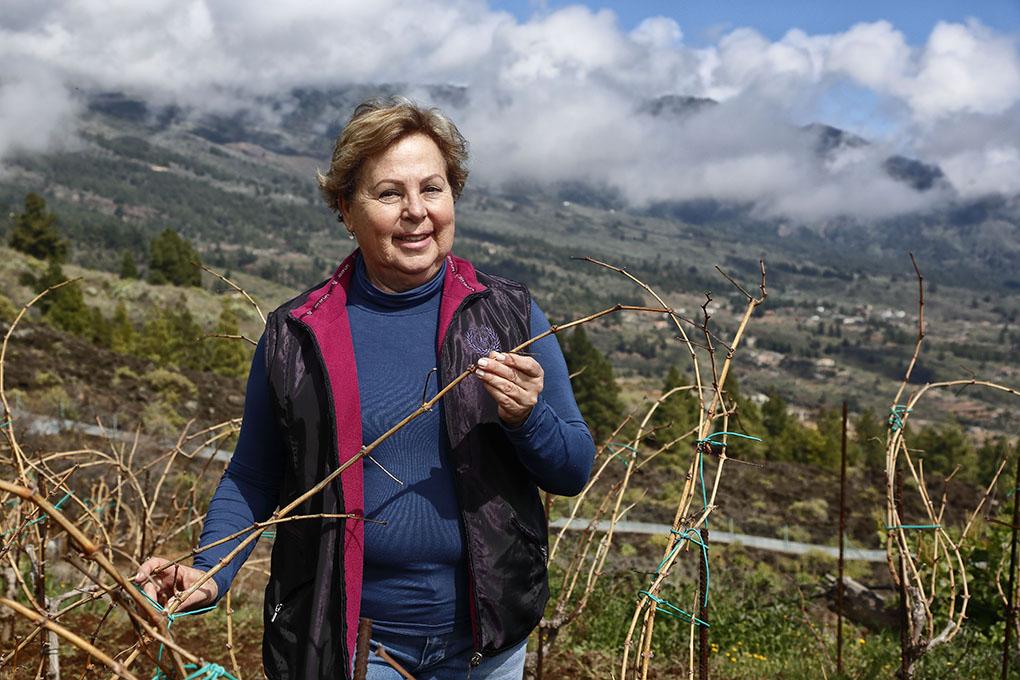 Carmen Gloria Ferrera acariciando su viñedo. Foto: Roberto Ranero.