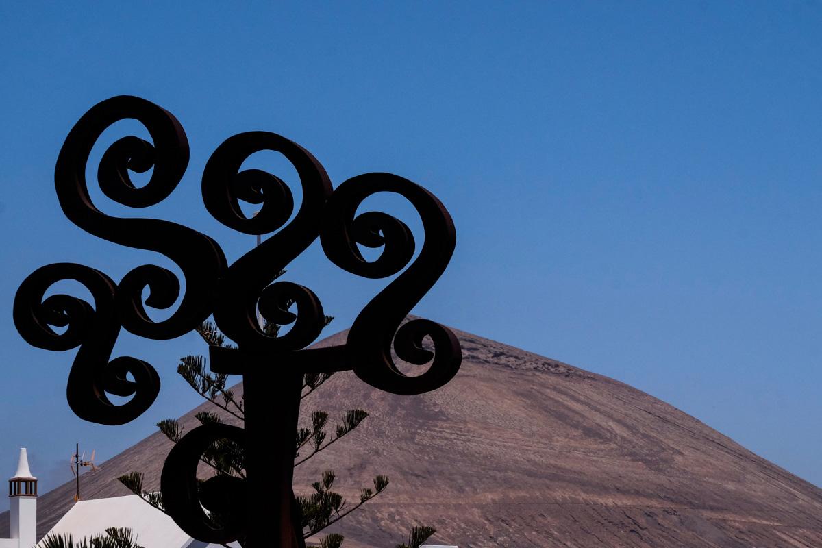 La Montaña Blanca aparece detrás del olivo que se ha convertido en símbolo de la Casa-Museo.
