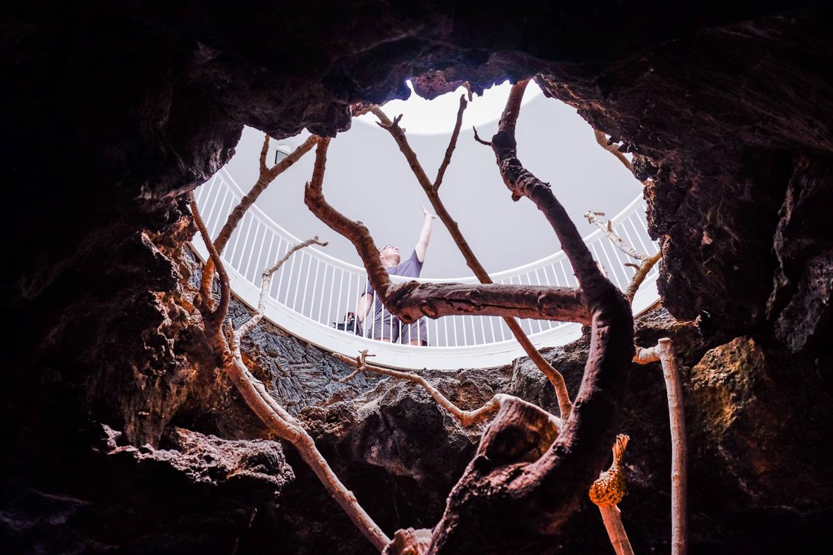 La naturaleza se abre paso por los huecos que dejó la roca volcánica en la que fue su primera casa.