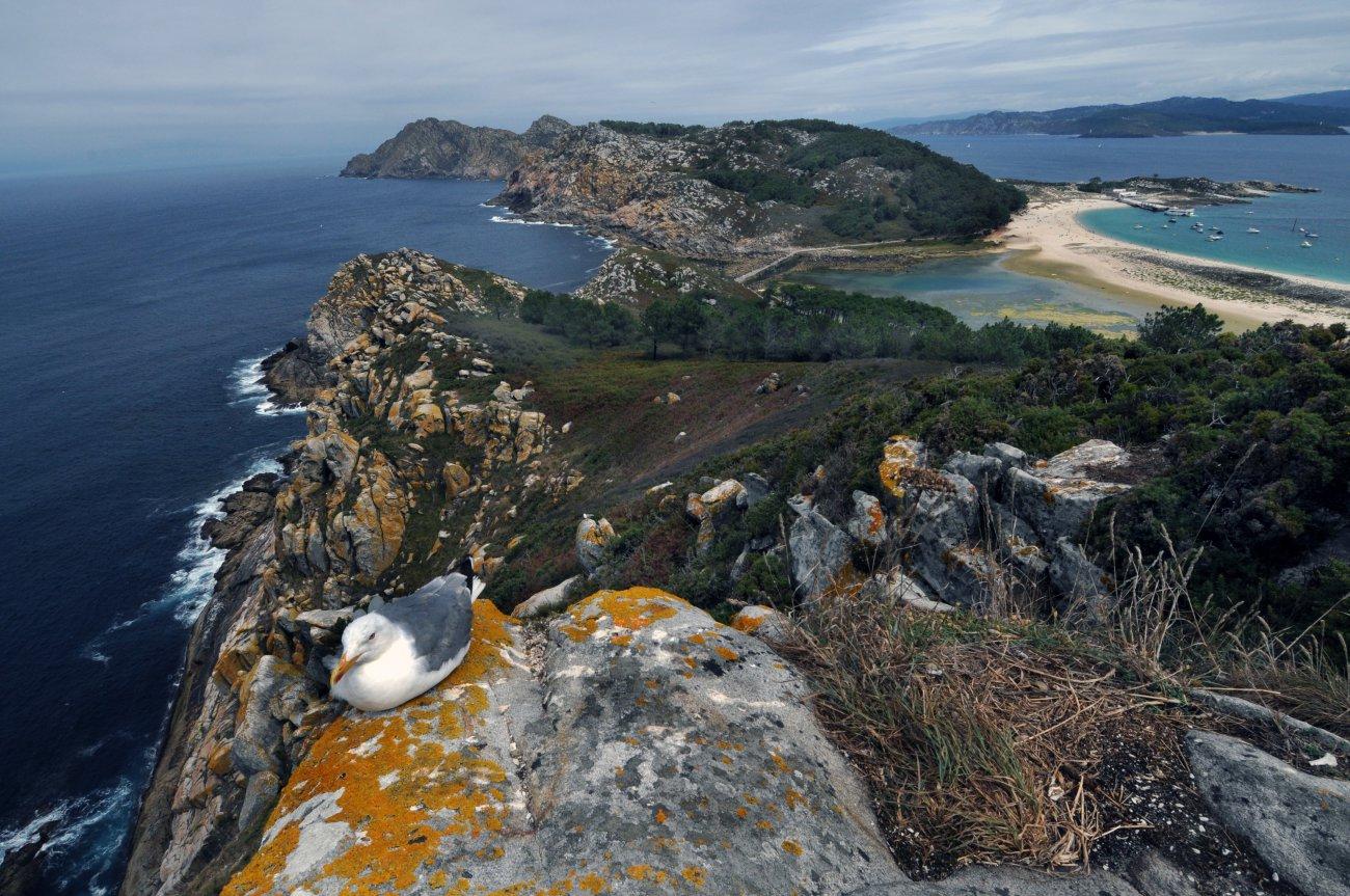 Parque Nacional Cíes-Islas Atlánticas: vistas desde el Mirador da Campa