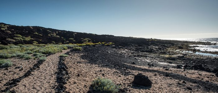 Ruta Malpaís de Güímar. Foto: Turismo de Tenerife.