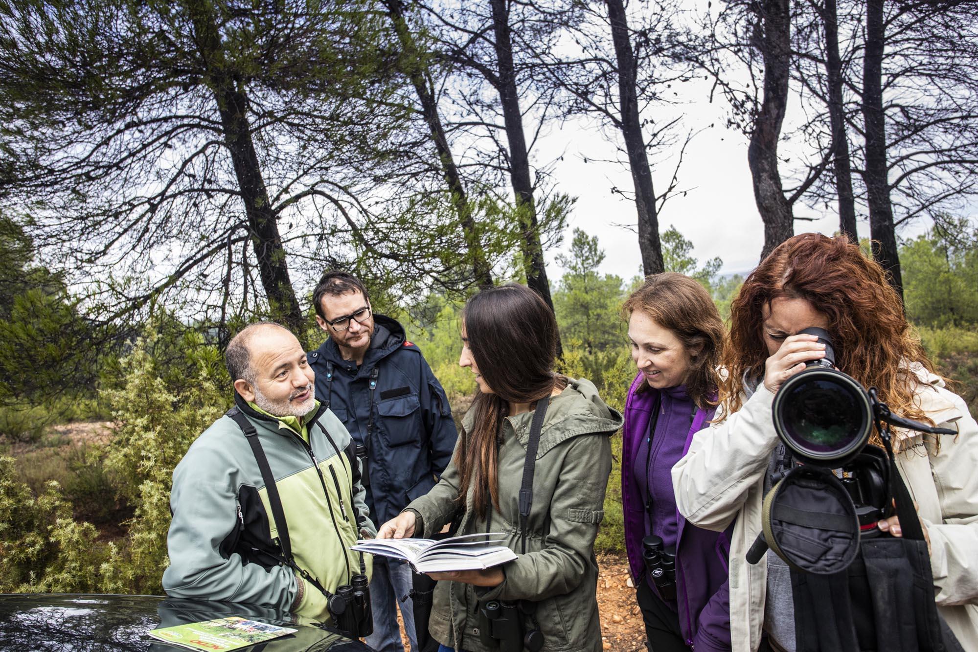 Incursión a uno de los pinares de las Hoces del Cabriel para encontrar alguno de los ejemplares que frecuentan la zona.