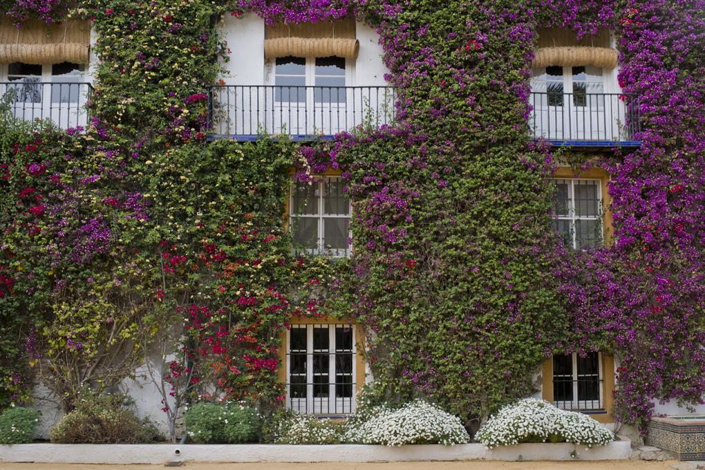 Los balcones del dormitorio de Eugenia de Montijo en Las Dueñas dan al patio de entrada al palacio.