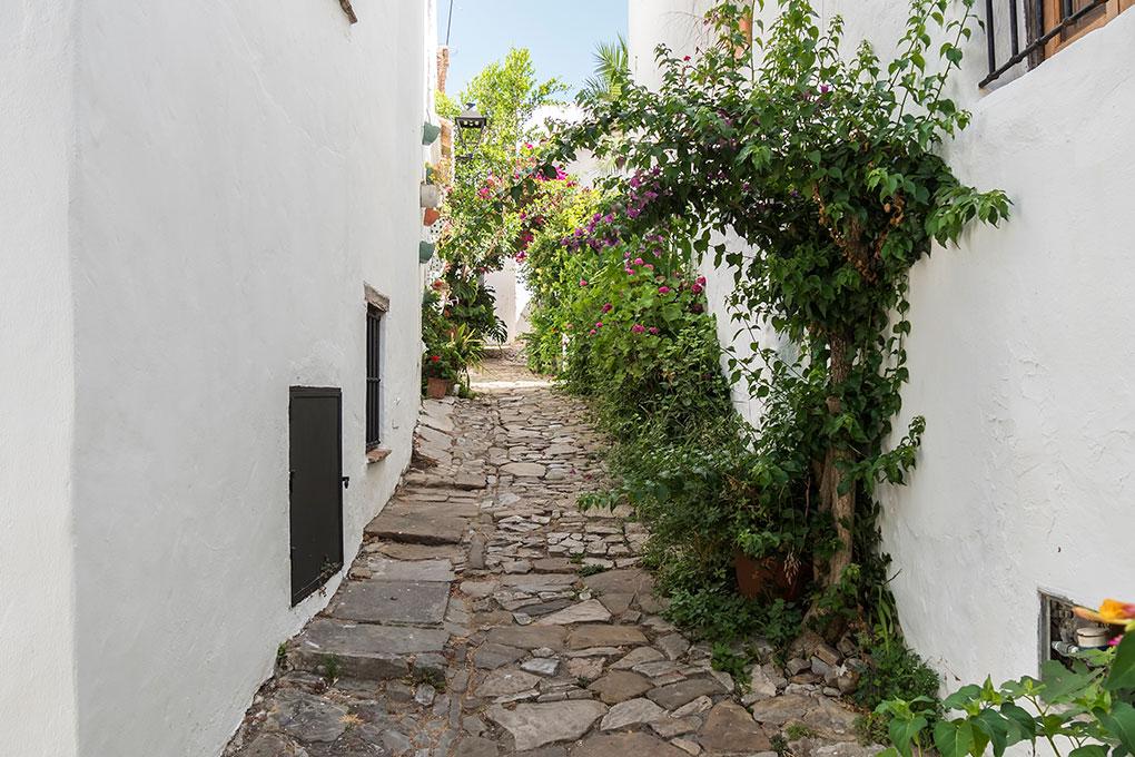 Imagen de uno de los maravillos pueblos de la zona, Castellar de la Frontera. Foto: Shutterstock.