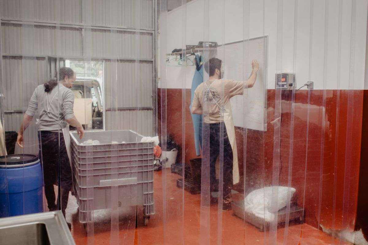 En la fábrica de Mar de Ardora, en Ortigueiras, A Coruña, pesando las algas recolectadas.