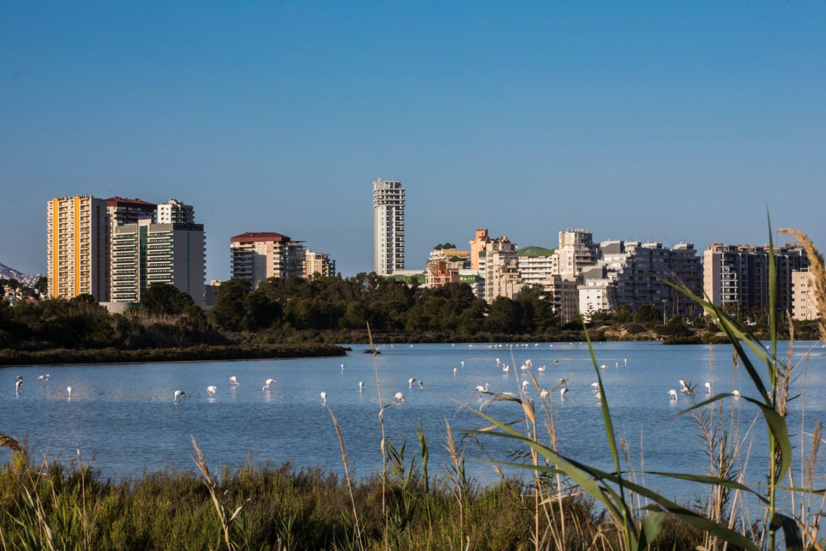 Vista de las Salinas de Calpe, en Alicante.