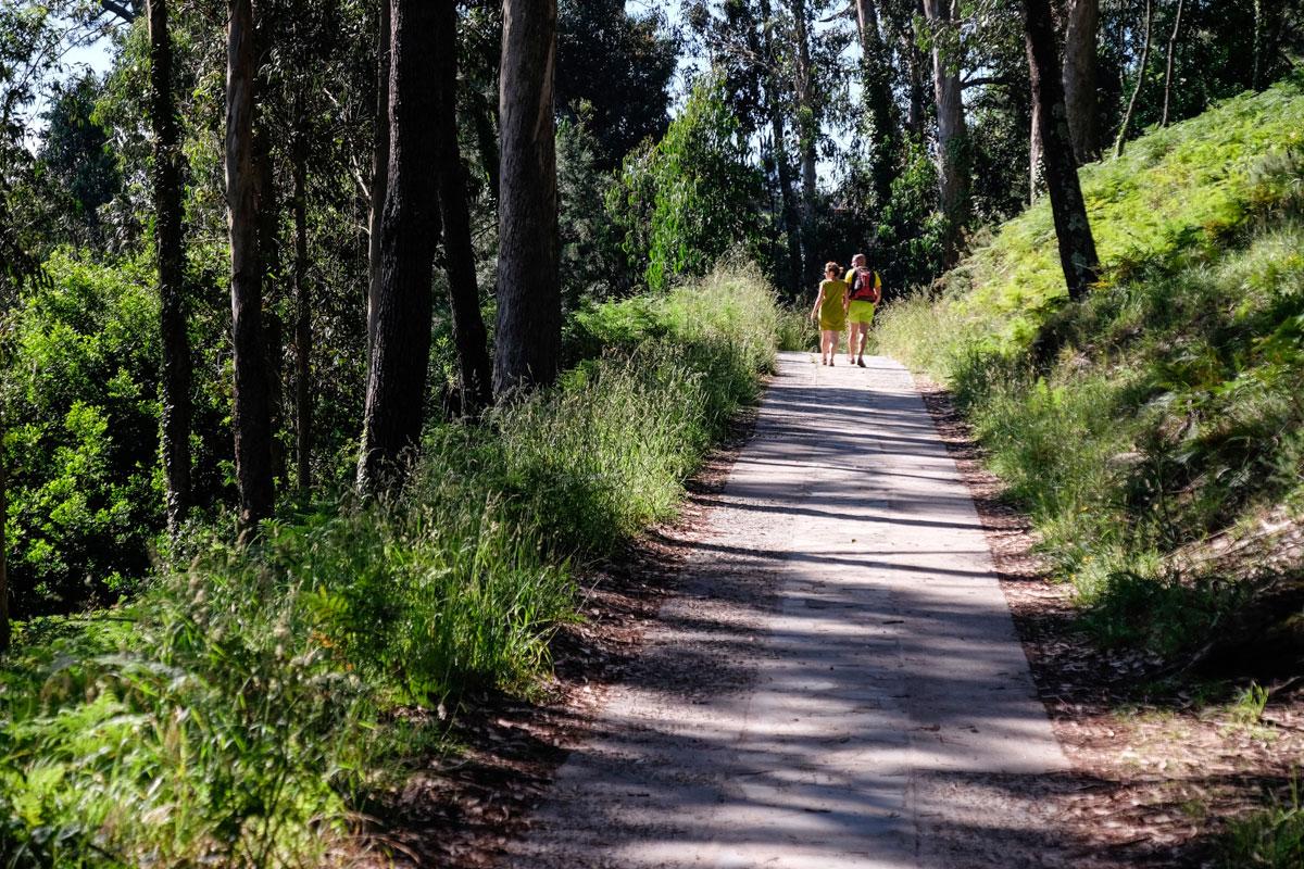 En algunas partes de las rutas que cruzan las islas la sombra acompaña a los caminantes.