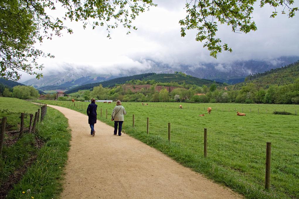 La ruta comienza en Apatamonasterio y tiene un recorrido de 10 kilómetros. Foto: shutterstock