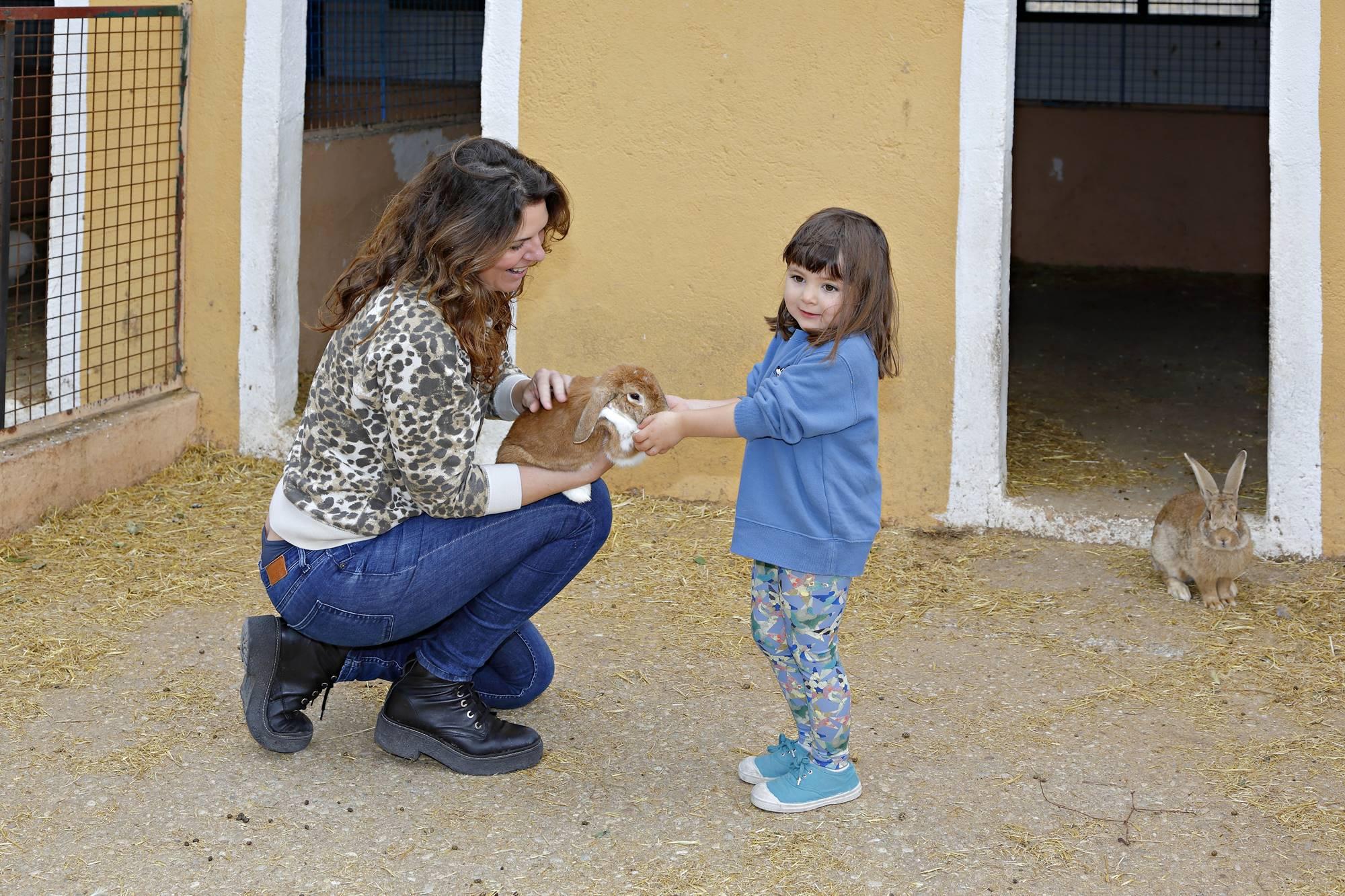 Los niños acarician con delicadeza a los pequeños conejos.
