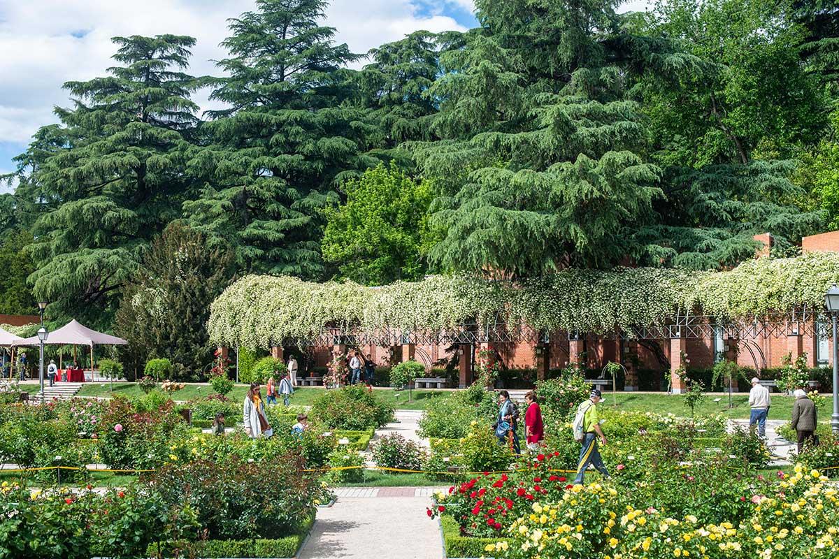 Vista del interior del jardín de La Rosaleda con turistas visitándolo, en el Parque del Oeste (Madrid).