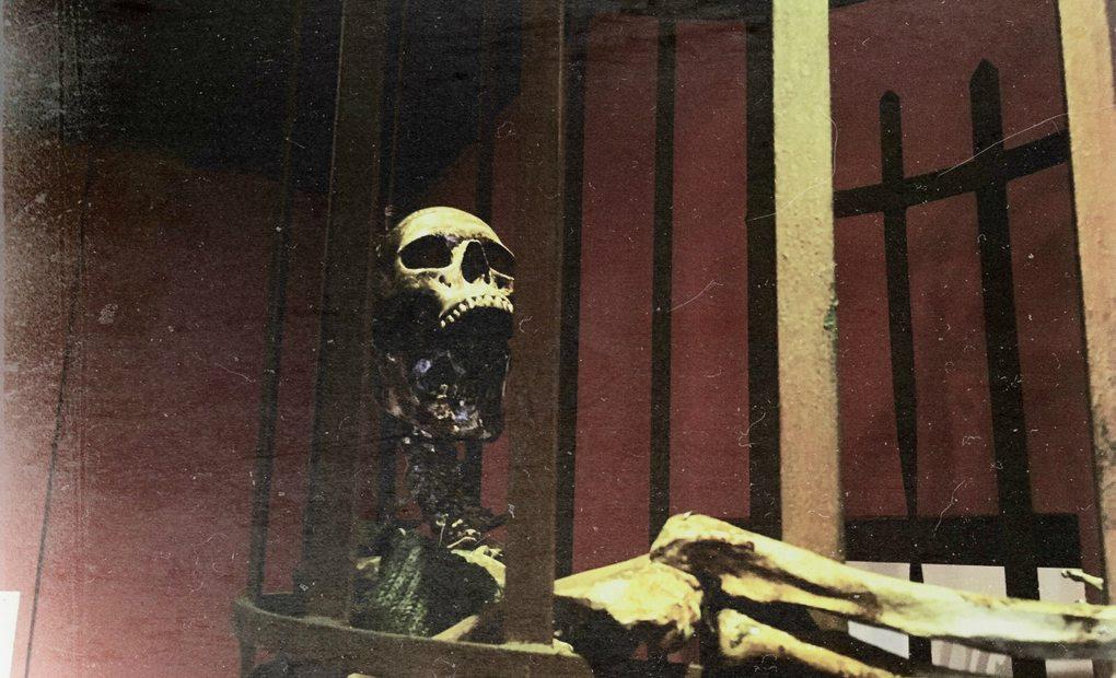 Una calavera en el Palacio de los Olvidados.