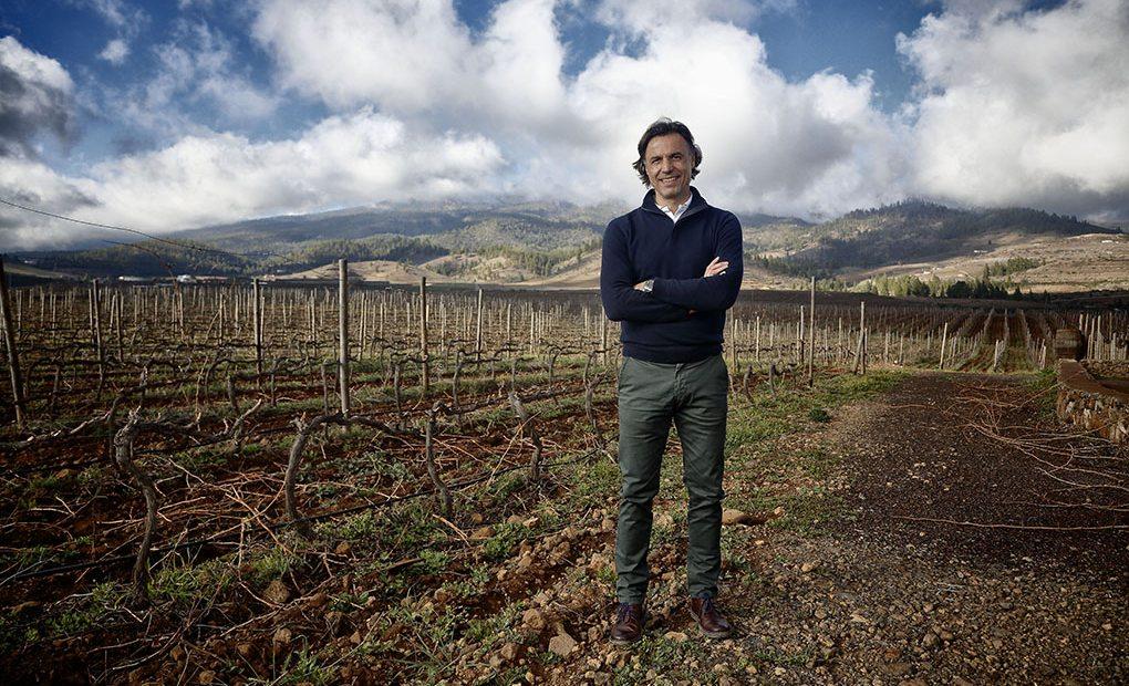 Enrique Alfonso en las viñas de Altos de Trevejos, a los pies del Teide.