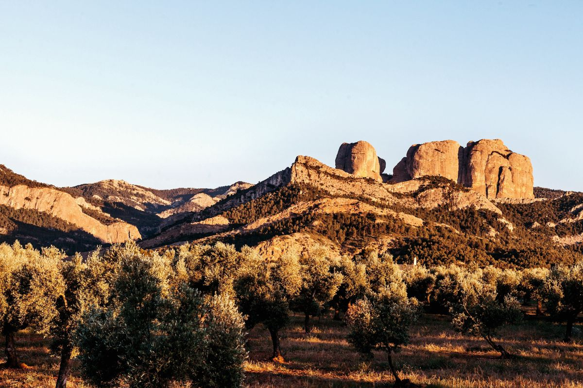 Monolitos de las Rocas de Benet, en Horta de Sant Joan. Foto: Flaminia Pelazzi