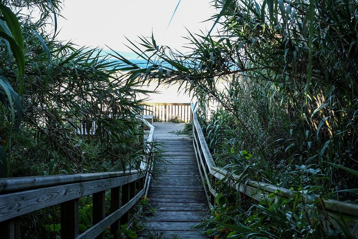 Estas escaleras, al lado de la terraza de 'Serafín', conducen al mirador del Lago de Cíes.