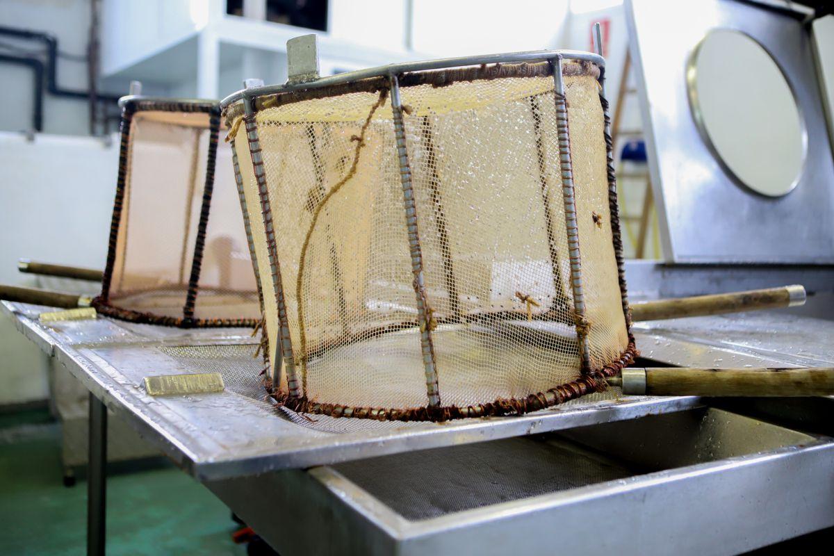 En Euskadi el arte de pesca se hace a través del cedazo o 'baia'.