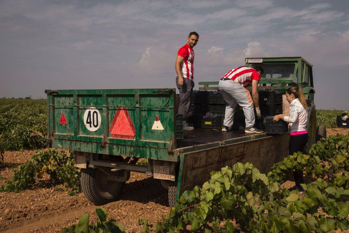 Con suma delicadeza van colocando las banastas sobre el camión.