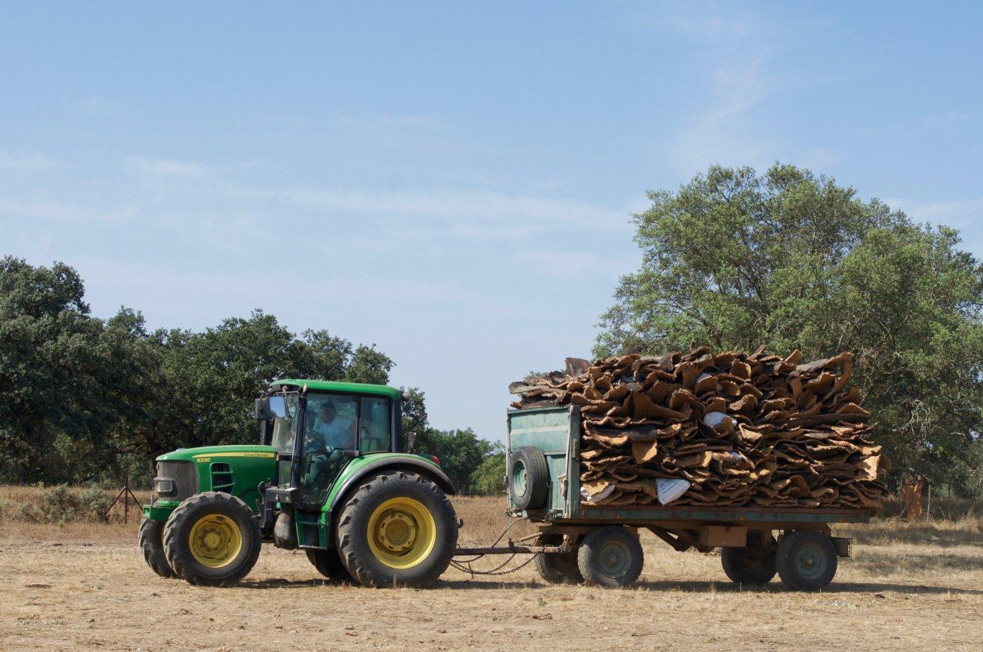 Descorche alcornoques: tractor