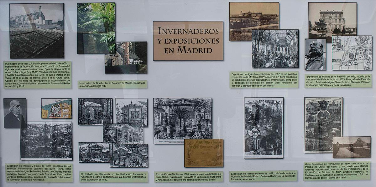 """Las paredes de """"El Barco"""" recogen la historia y el esplendor romántico de los invernaderos en los palacios del XIX."""