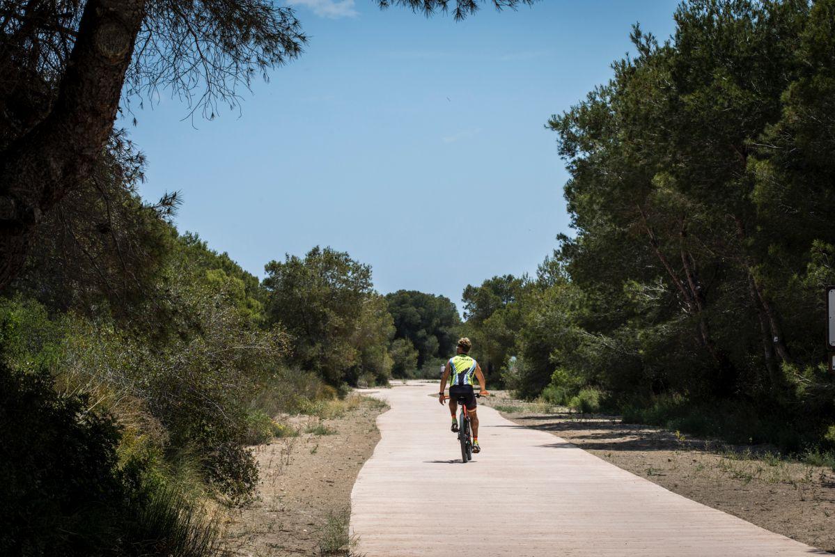Un ciclista recorre el camino hacia la playa de la Garrofera, en El Saler (Parque Natural de La Albufera, Valencia).