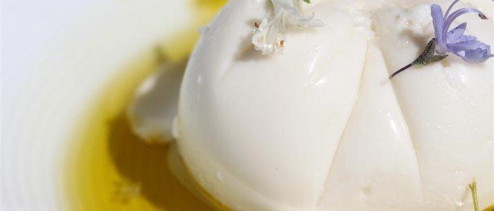 Plato estrella: Queso fresco de leche de almendras, aceite de oliva virgen e hidromiel